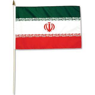 Promex Iran Flag Small
