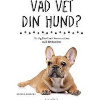 Vad vet din hund?: lär dig förstå och kommunicera med ditt husdjur (Inbunden)