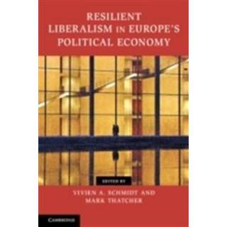 Contemporary European Politics (Häftad, 2013)