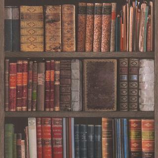Rasch Library Books (934809)
