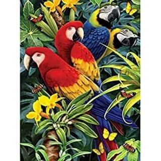 Royal & Langnickel Paint by Numbers Kit Majestic Macaws