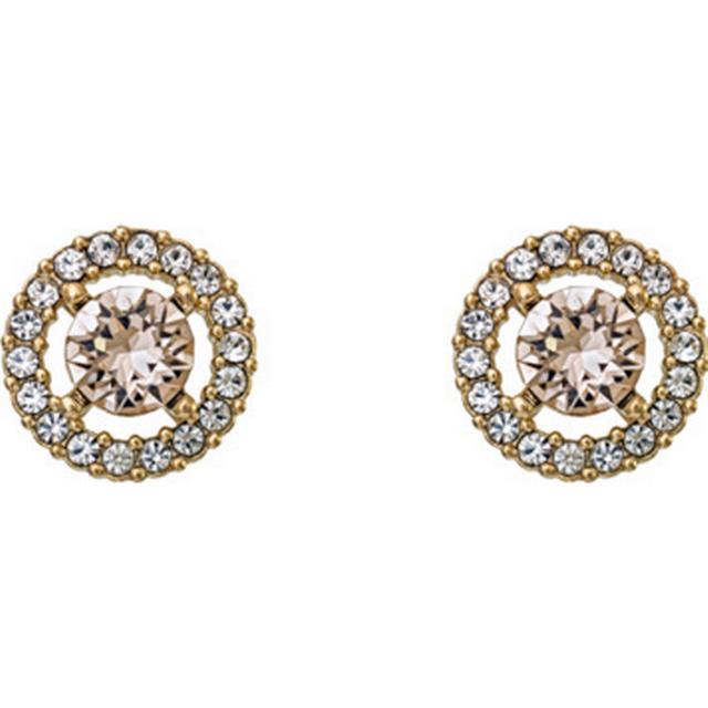 Lily and Rose Miss Miranda Brass Earring w. Swarovski Crystals - 1.1cm (60748)