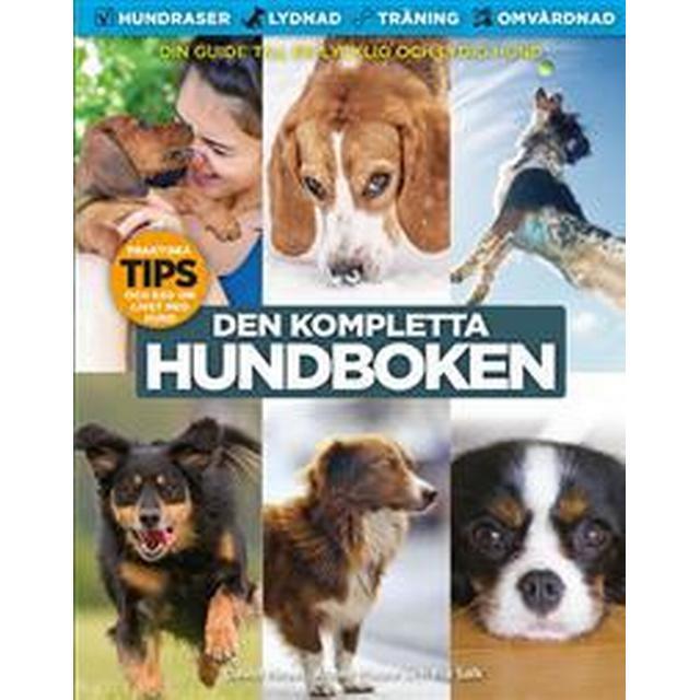 Den kompletta hundboken: en lydig hund är en lycklig hund (Häftad, 2017)